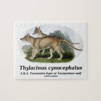Thylacinus cynocephalus (Tasmanian tiger or wolf) Jigsaw Puzzle