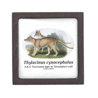 Thylacinus cynocephalus (Tasmanian tiger or wolf) Keepsake Box