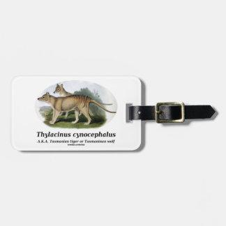Thylacinus cynocephalus (Tasmanian tiger or wolf) Luggage Tag