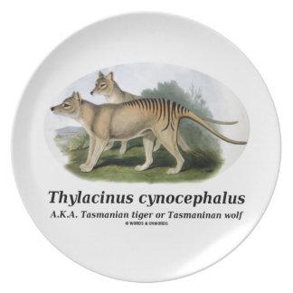 Thylacinus cynocephalus (Tasmanian tiger or wolf) Melamine Plate
