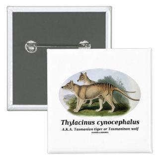 Thylacinus cynocephalus (Tasmanian tiger or wolf) Pinback Button