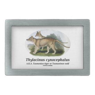 Thylacinus cynocephalus (Tasmanian tiger or wolf) Rectangular Belt Buckle