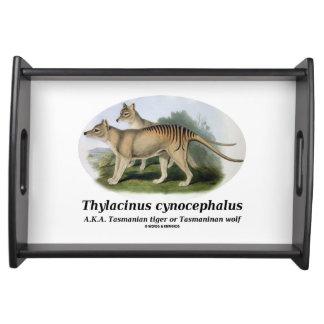 Thylacinus cynocephalus (Tasmanian tiger or wolf) Serving Tray