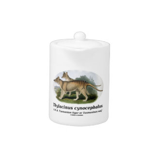 Thylacinus cynocephalus (Tasmanian tiger or wolf) Teapot