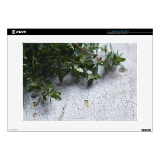 """Thyme on old wooden table 15"""" laptop skin"""