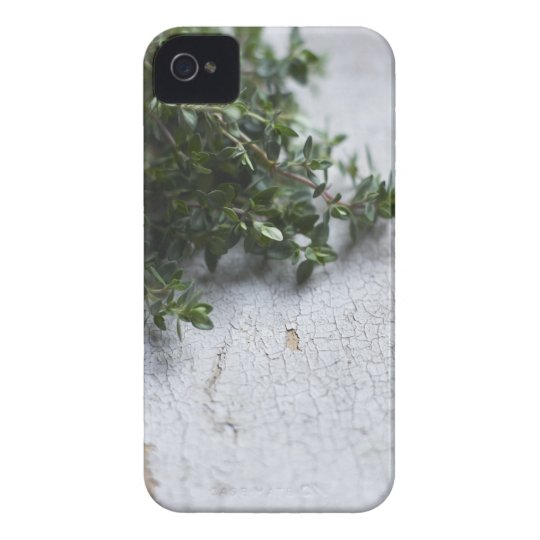 Thyme on old wooden table iPhone 4 cover