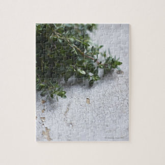 Thyme on old wooden table jigsaw puzzle