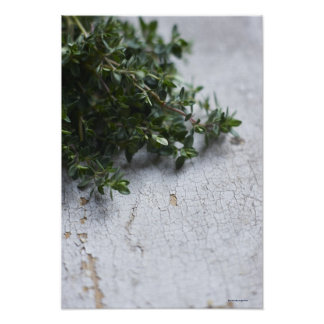 Thyme on old wooden table poster