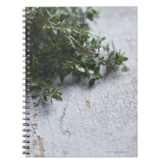 Thyme on old wooden table spiral notebook