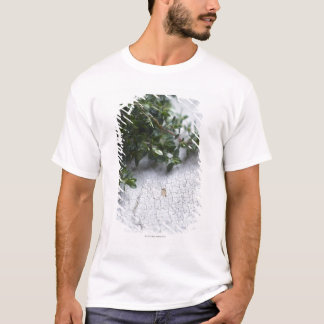 Thyme on old wooden table T-Shirt