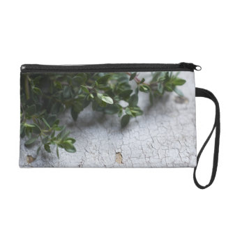 Thyme on old wooden table wristlet purse