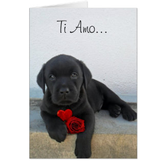 Ti Amo Labrador puppy greeting card