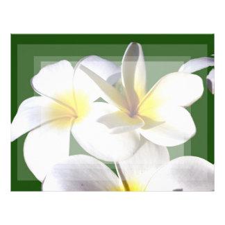 ti plant flowers yellow white green back letterhead