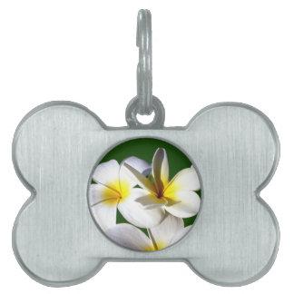 ti plant flowers yellow white green back pet name tag
