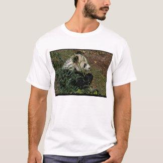 Tian Tian #4 T-Shirt
