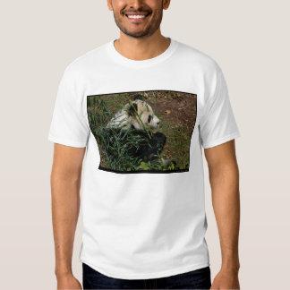 Tian Tian #4 Tee Shirt