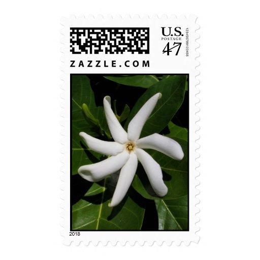 Tiare Tahiti Stamp