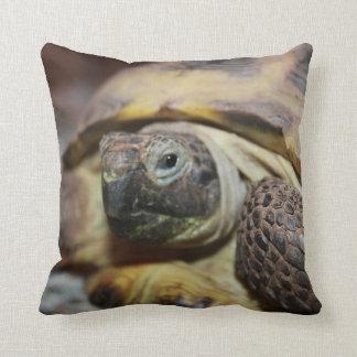 Tibbs  pillow