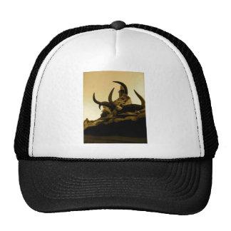 Tibetan Horns Trucker Hat