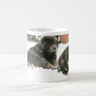Tibetan Mastiff Caspar & Jampo Coffee Mug