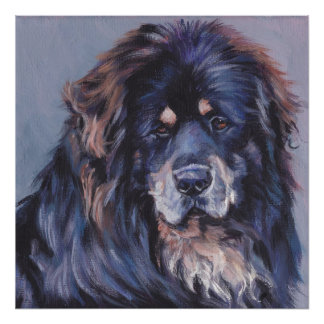 Tibetan Mastiff Fine Art Poster Print