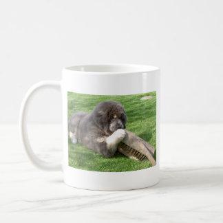 Tibetan Mastiff Jampo with broom Coffee Mug