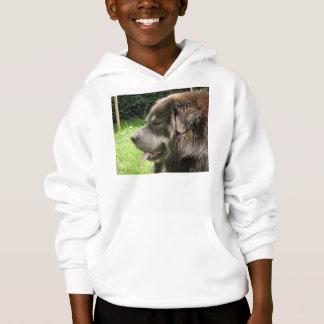 tibetan mastiff.png hoodie