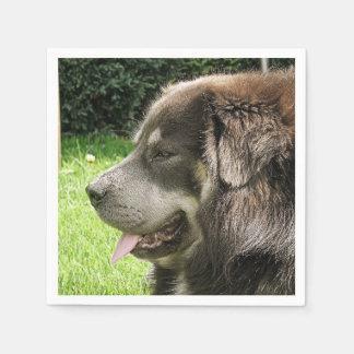 tibetan mastiff.png paper napkin