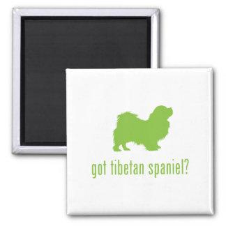 Tibetan Spaniel 2 Inch Square Magnet