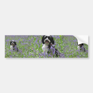 Tibetan Terrier Bumper Sticker Car Bumper Sticker
