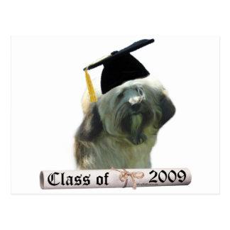 Tibetan Terrier Grad 09 Postcard