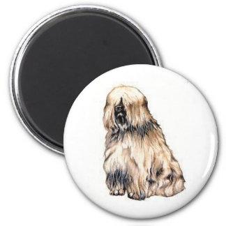 Tibetan Terrier Magnet