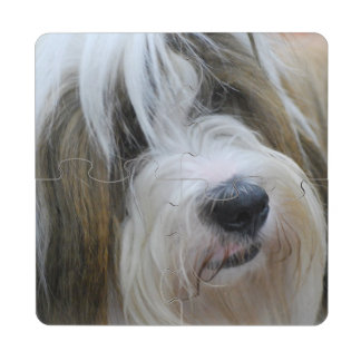 Tibetan Terrier Puzzle Coaster