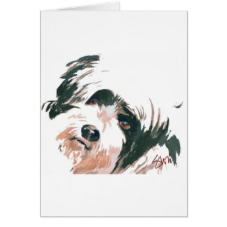 Tibetan Terrier portrait Card