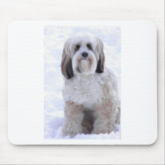 Tibetan Terrier Sable and White Mouse Pad