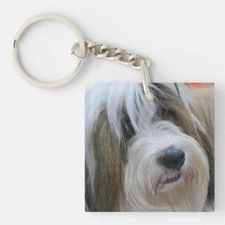 Tibetan Terrier Single-Sided Square Acrylic Keychain