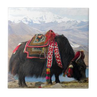 Tibetan Yak Tile