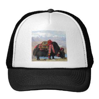 Tibetan Yak Trucker Hat