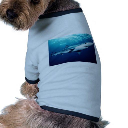 Tiburón azul camisetas de perrito