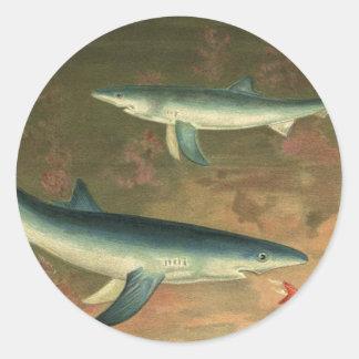 Tiburón azul de la vida acuática marina del pegatina redonda