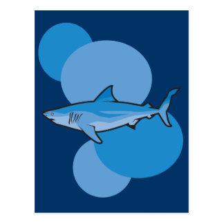 Tiburón azul postales