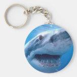 tiburon-blanco.jpg key chain