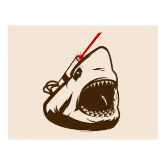 Tiburón con un Frickin de rayo láser Tarjeta Postal