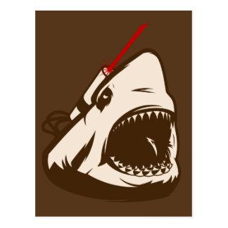 Tiburón con un Frickin de rayo láser Tarjetas Postales