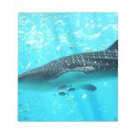 Tiburón de ballena azul fresco elegante elegante d libreta para notas