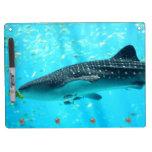 Tiburón de ballena azul fresco elegante elegante d pizarra