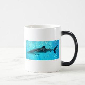 Tiburón de ballena azul fresco elegante elegante d tazas de café