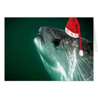Tiburón de ballena de HoHoHo Tarjeta De Felicitación