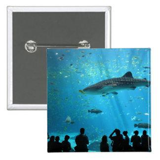 Tiburón de ballena masculino pins