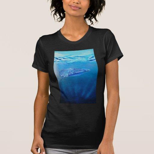 Tiburón de ballena t shirts